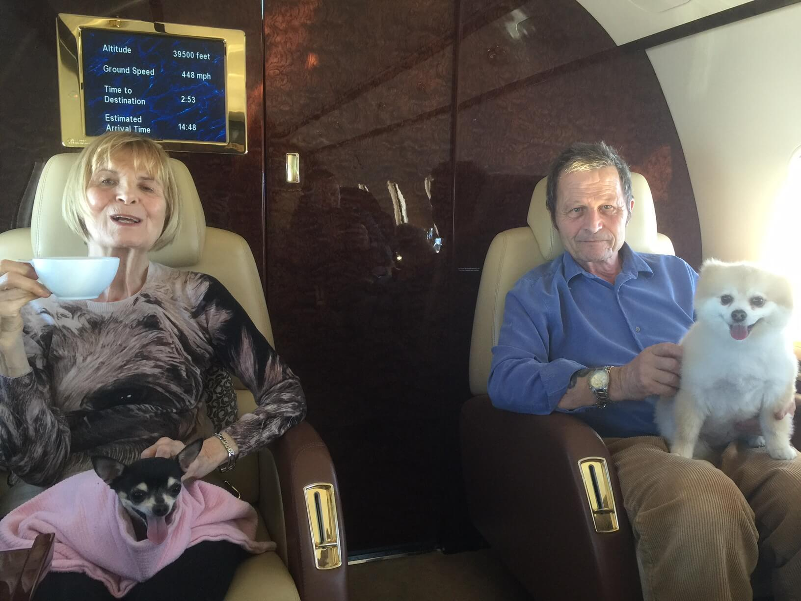 Private jet pet travel