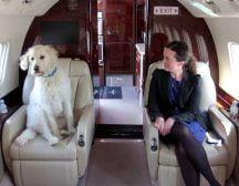 private jet flight